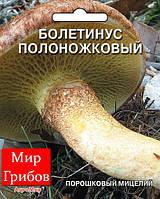 Мицелий порошковый маточный  Болетинус полоножковый, 10г