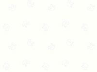 Тик наперниковый Ш-220 100% хлопок