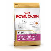 ROYAL CANIN WESTIE HIGHLAND WHITE TERRIER ADULT (ВЕСТ ХАЙЛЕНД ВАЙТ ТЕРЬЕР ЭДАЛТ) корм для собак 3КГ