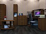 Пенал КШ-10 для офиса и дома для документов и оргтехники стандартный, фото 2