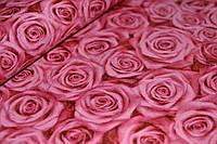 Обои на стену, винил на флизелине, горячего тиснения, Роза 305-02, 1,06*10м