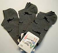 Носки в акулы мужские низкие темно-серого цвета