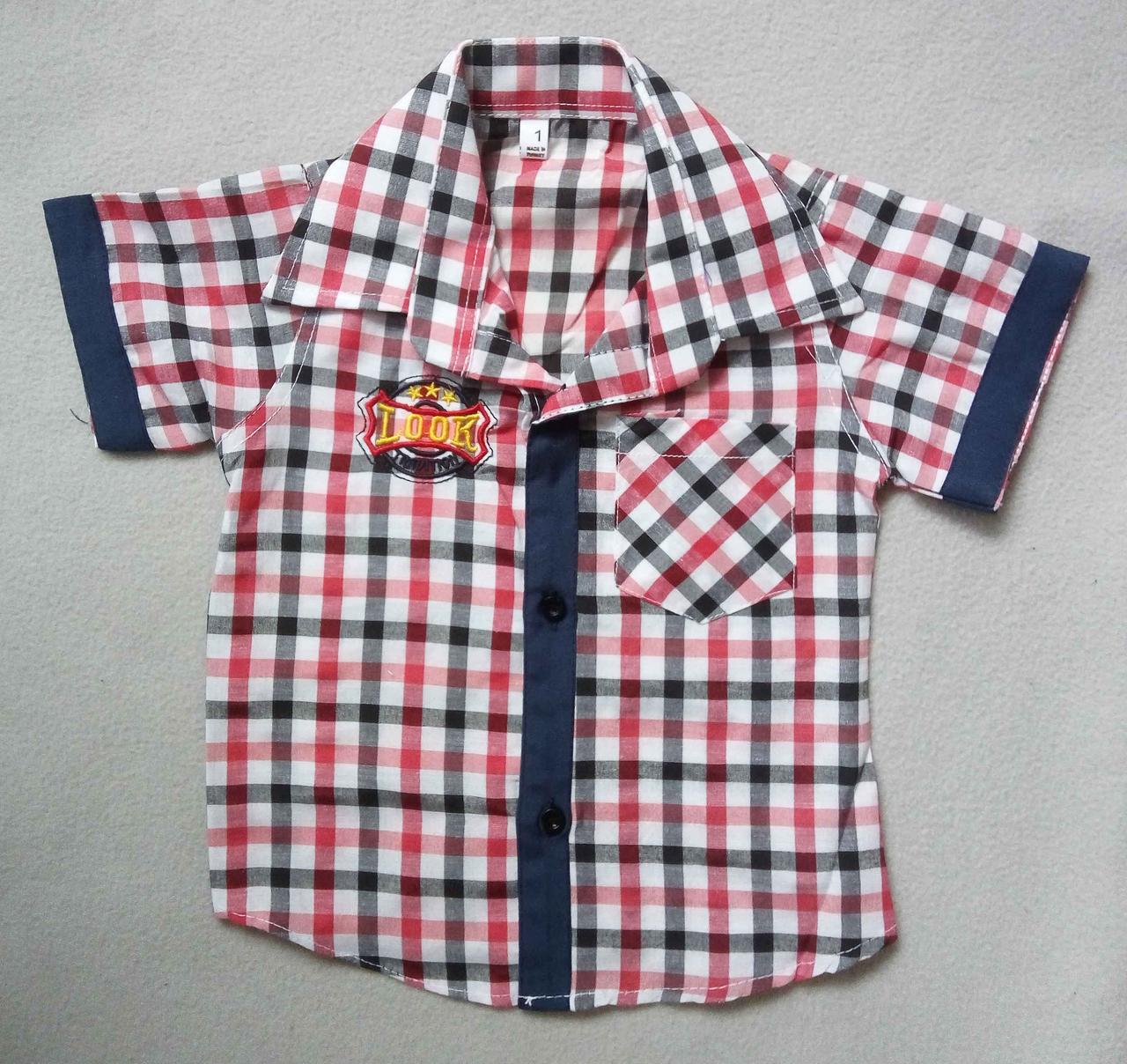 170a59feee2 Детская рубашка с коротким рукавом в клетку для мальчиков 1-4 года -  Интернет магазин