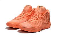 Мужские кроссовки Air Jordan Melo 13 (Powder), фото 1