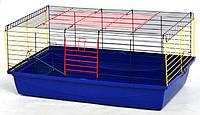 Клетка Кролик-100 для морских свинок и кроликов (краска) 1000х540х460мм