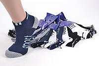 Детские носки на мальчика SPORT (B6/27-30) | 12 пар