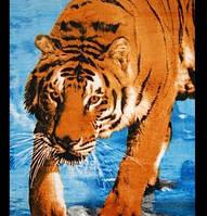 Полотенце пляжное велюровое Homeline 75х150 Тигр