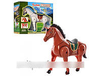 Лошадка, ходит, 2 цвета, арт. 0055 А HN