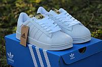 Мужские спортивные кроссовки Adidas Superstar (белые)