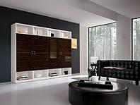 Стенки в стиле модерн с шпоном екзотического дерева