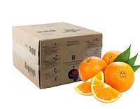 """Сироп для слаша """"Апельсин"""", 10л, EU"""