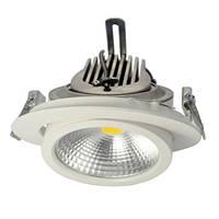 Регулируемый (Trunk Downlight) LED светильник 12/20/35W