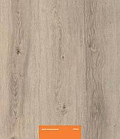 Ламинат KASTAMONU, Кастамону, Оранж, ORANGE, Дуб жемчужный, 952, 32 класс, толщина 8 мм, фаска 4V