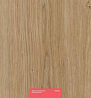 Ламінат KASTAMONU, Кастамону, Ред, RED, Дуб королівський натуральний, 28, 32 клас, товщина 8 мм, без фаски
