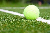 Искусственная трава для тенниса 20 мм (Нидерланды)