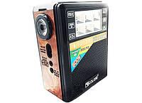 Портативная колонка радио караоке MP3 USB Golon RX-199 c Led фонариком