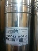 Шнековый(глубиный)(скважинный)насос EVROAQVA 4QGD2.5 - 100 - 0,75