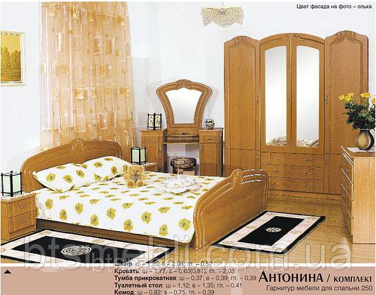 Спальня Антонина, фото 2