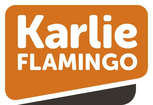 Karlie-Flamingo кістки та ласощі