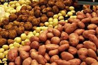 Мониторинг цен на картофель