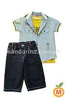 Комплект для мальчика: шорты, футболка и рубашка