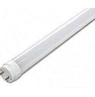 Светодиодная лампа Biom T8-GL-1200-8W-1ст CW G13  6200K матовое стекло