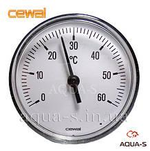Термометр для отопления CEWAL (0-60° С) погружной фронтальный (Италия)