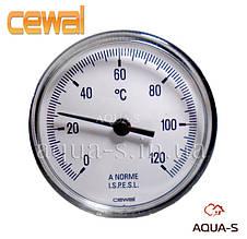 Термометр для отопления CEWAL (0-120° С) погружной фронтальный (Италия)
