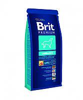 Brit Premium (Брит Премиум) LAMB&RICE 8кг - корм для собак с чувствительным пищеварением (ягненок/рис)