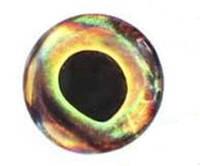 Глазки 3-Д Реалистичный (4D real eyes/4D living eyes) (Wind) 4 мм, фото 1