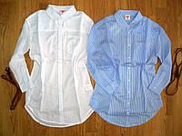 Котоновые рубашки- туники на девочек оптом, Glo-story, 134-164 рр