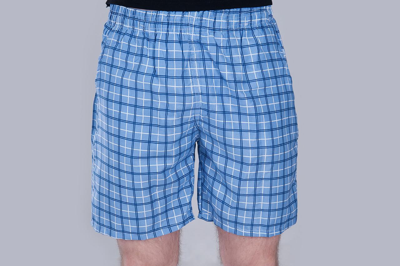 Чоловічі шорти в клітинку (плащівка), блакитного кольору