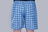 Чоловічі шорти в клітинку (плащівка), блакитного кольору, фото 3