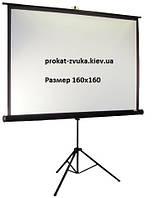 Аренда, прокат экрана для проектора на треноге (160*160)