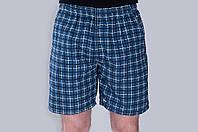 Мужские летние шорты синего цвета (клетка). Хмельницкий