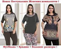 Новое поступление Женских комплектов с бриджами!