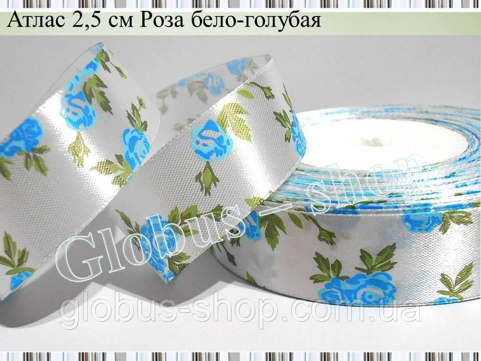 Роза, біло-блакитна