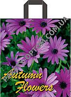 """Пакет с петлевой ручкой тип """"Диор"""" """"Фиолетовая хризантема"""" (38х42(+3)) 25 шт"""