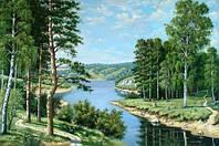 Картина акриловыми камнями Лесная река DM-020 (50 х 33 см) Алмазная мозаика