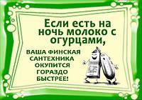 """Магнит сувенирный """"Юмор"""" 62"""