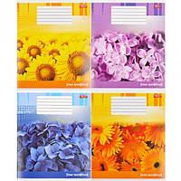 """Тетрадь цветная 12 листов,линия """"Цветочная тетрадь"""""""
