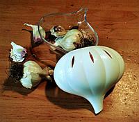 Контейнер для чеснока., фото 1