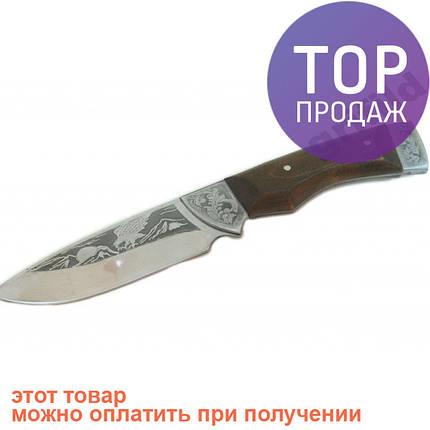 Туристический охотничий нож ручной работы Орел / Висококачественный жаропрочный стальной клинок, фото 2