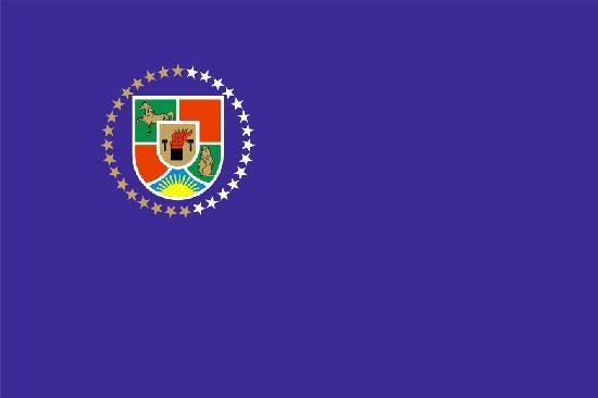 Флаг Луганской области 90х150см