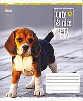 "Тетради 24 листа клетка ""Cute and Nice"""