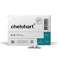 Челохарт - пептидный комплекс А-14, восстановление сердечной мышцы (Дозировка: 60 капсул)