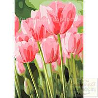 Картина по номерам: Весенние тюльпаны, 35х50см. (КНО2069), фото 1