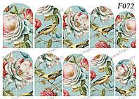 Слайдер -дизайн Цветы,Птичка F072