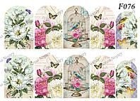 Слайдер -дизайн Цветы,Птички F076