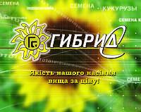 Ультраранние Семена подсолнечника Украинское солнышко
